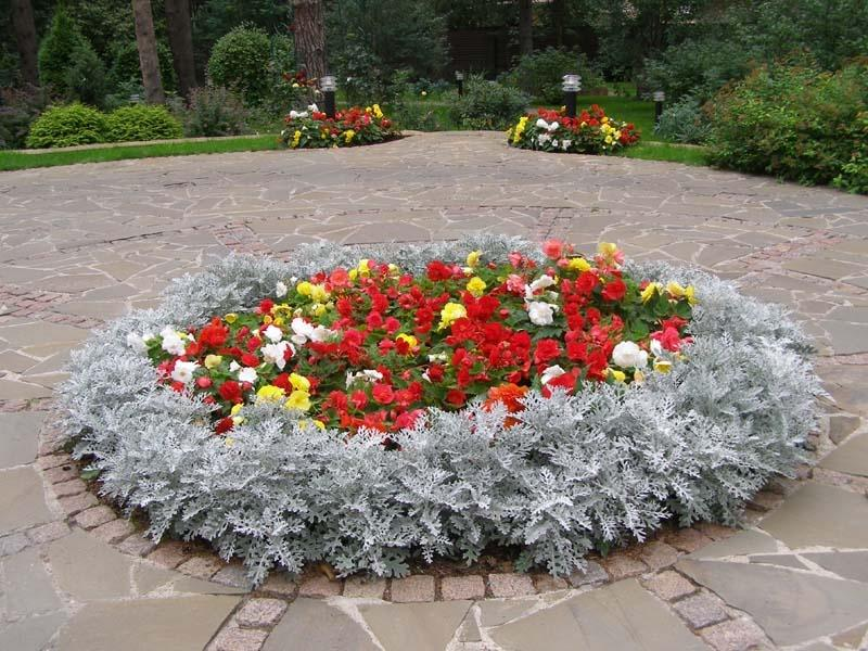 9f1173 - Interesting Design of the Flowerbeds