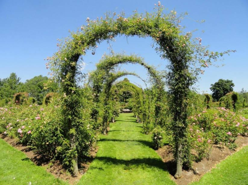 Common Mistakes in Garden Design: Bundles and Boundaries - Best