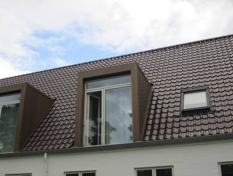 Additional roofing elements (accessories)
