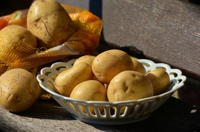Useful Tips for the Gardener: Planting Potatoes in a New Way