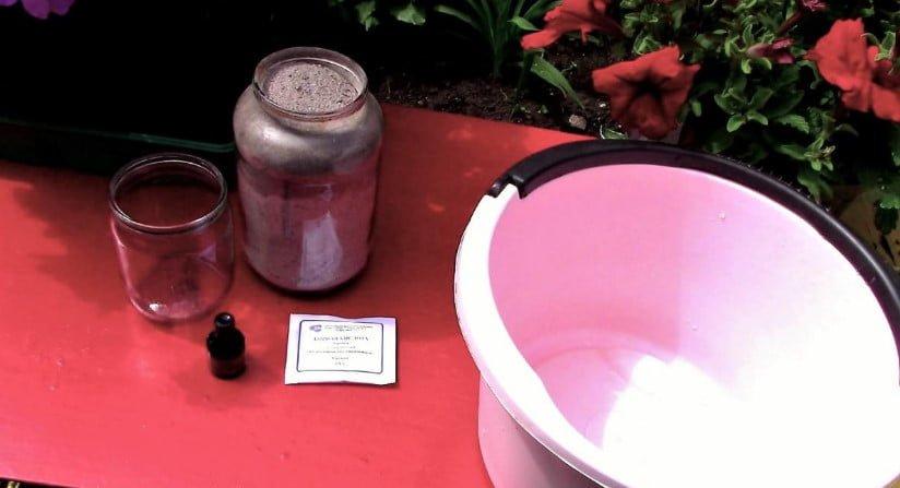 Fertilizing Tomatoes During Fruiting
