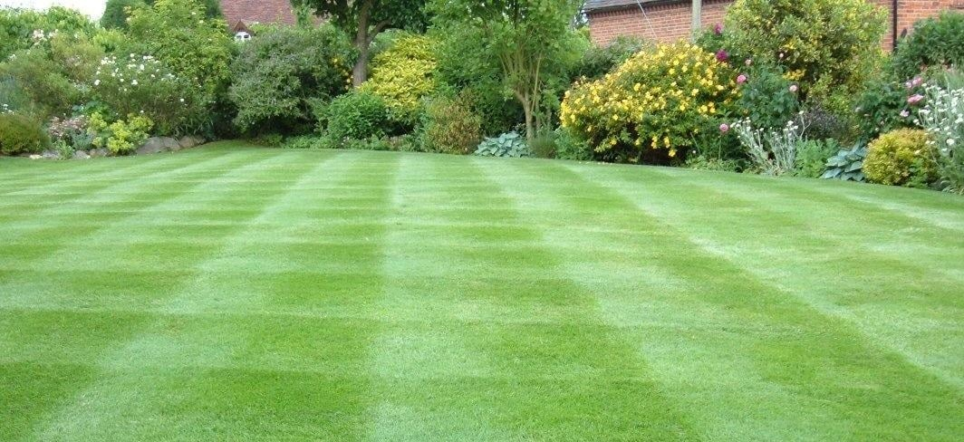 Five of the Most Relevant Tips for Lawn Care