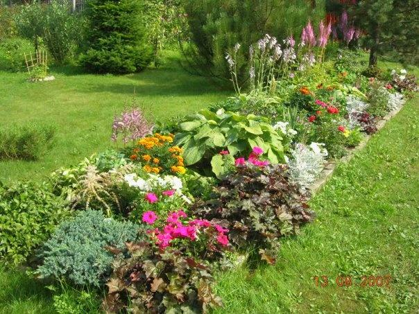 Flower Beds in the Cottage: Which to Choose?