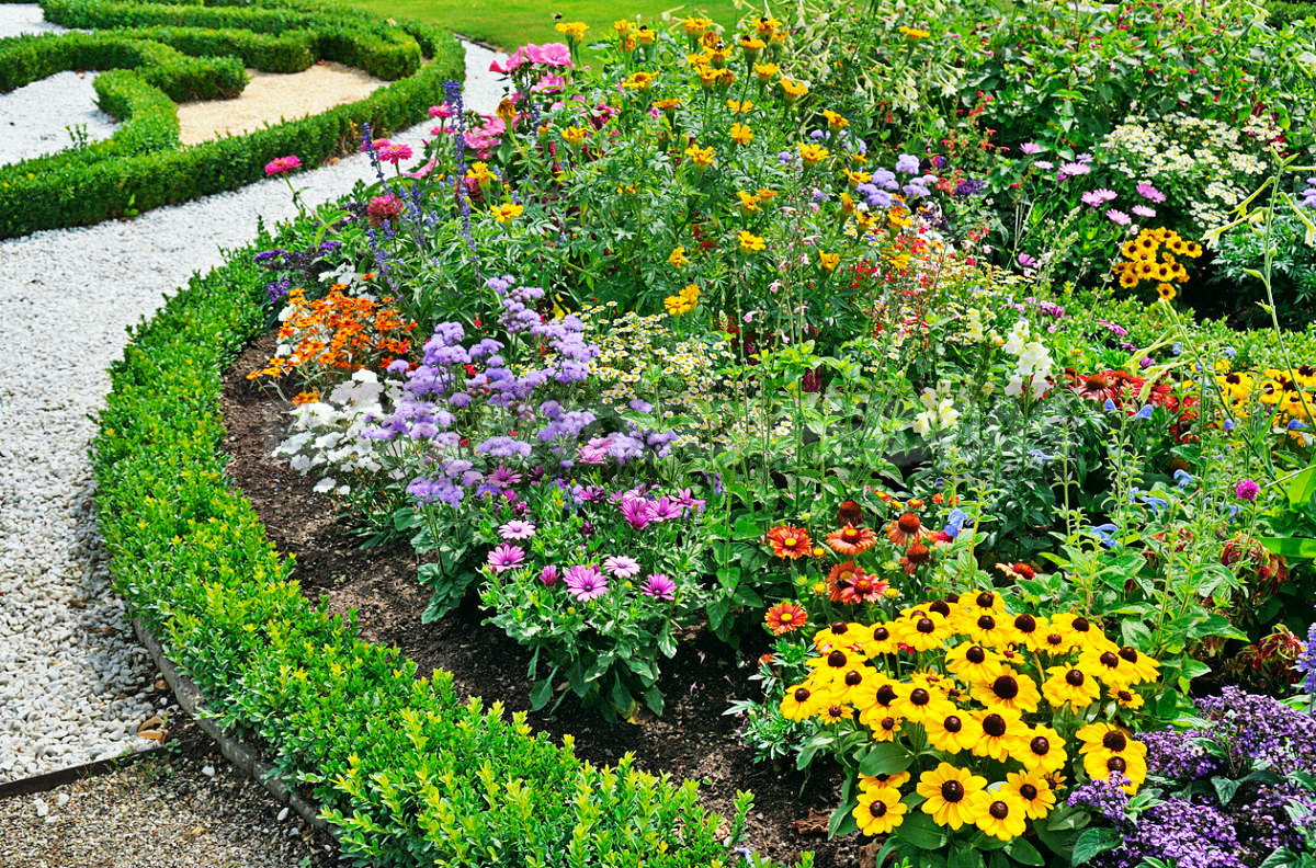 Flowers For Growing On Flower Beds Best Landscaping Ideas