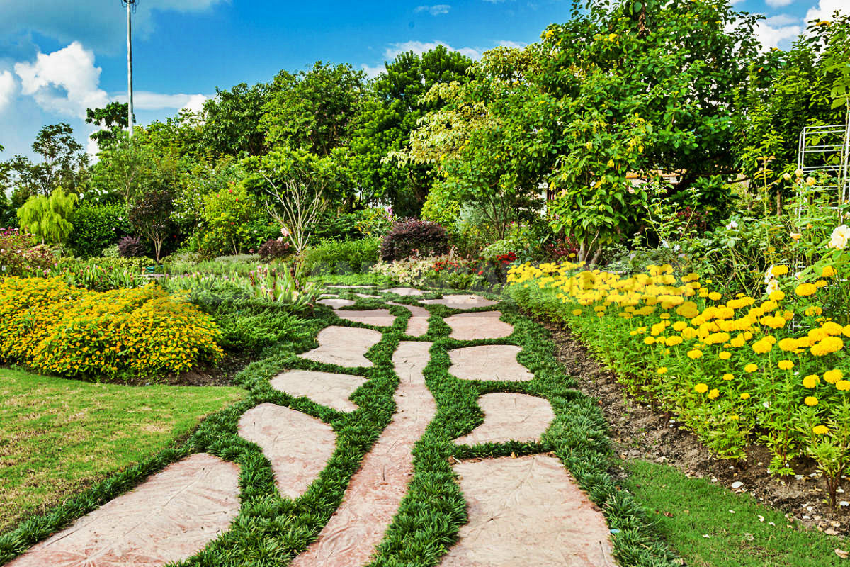0 6 - Garden Paths With Their Hands