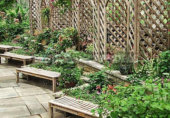 Trellis-Stylish Garden Decoration
