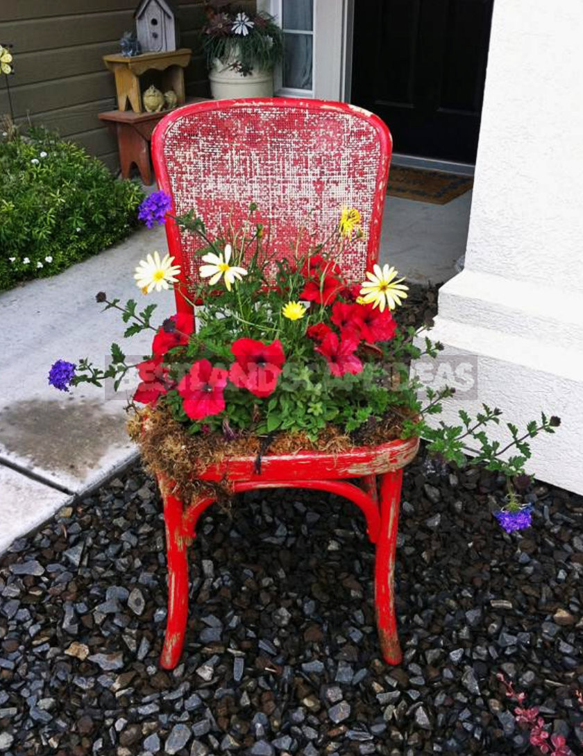 1 14 - Original Ideas for Your Flower Bed