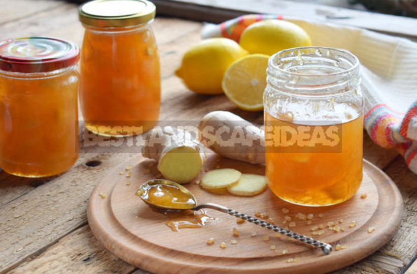 Nine Healing Recipes With Ginger: the Cold Will Not Come