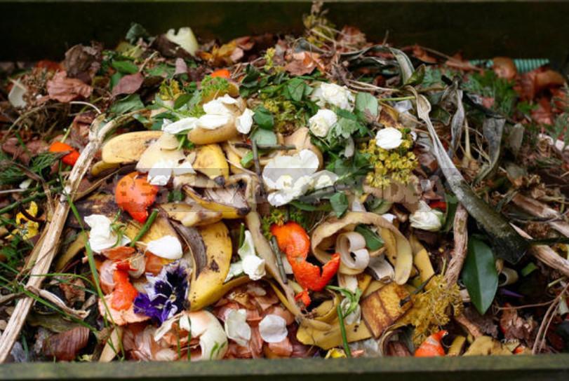 Baking Soda for Garden and Vegetable Garden: 22 Ways of Application On a Site
