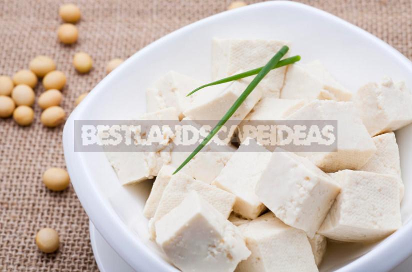 How to Make Tofu Cheese at Home