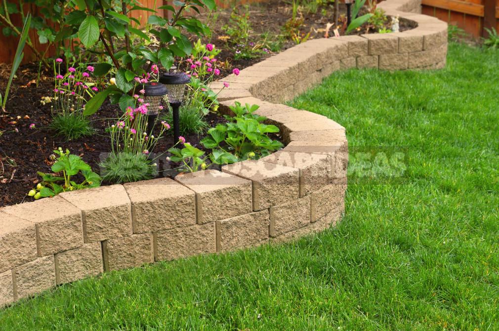 The Secret of a Beautiful Lawn Aerator Care Will Be Easier 1 - The Secret of a Beautiful Lawn: Aerator Care Will Be Easier