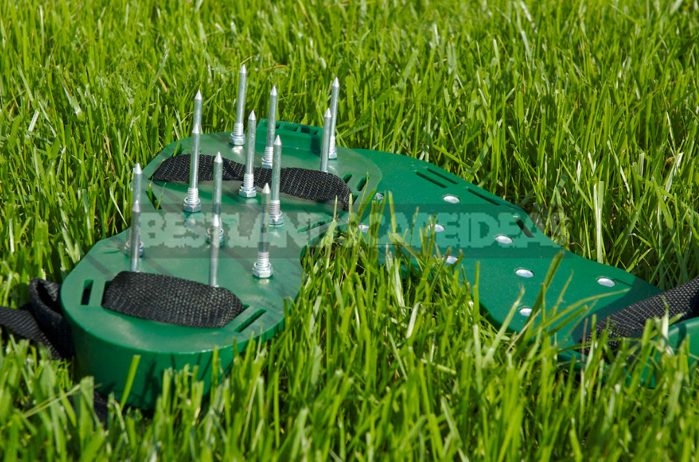 The Secret of a Beautiful Lawn: Aerator Care Will Be Easier