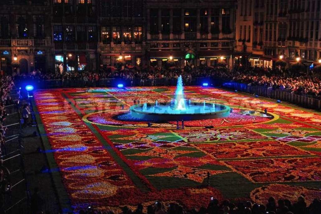 Flower Carpet in Brussels 2018: Show Flower Carpet