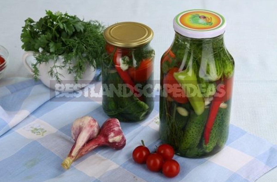 Snacks of cucumbers for the winter with different vegetables recipes 1 - Snacks of Cucumbers for the Winter With Different Vegetables: Recipes