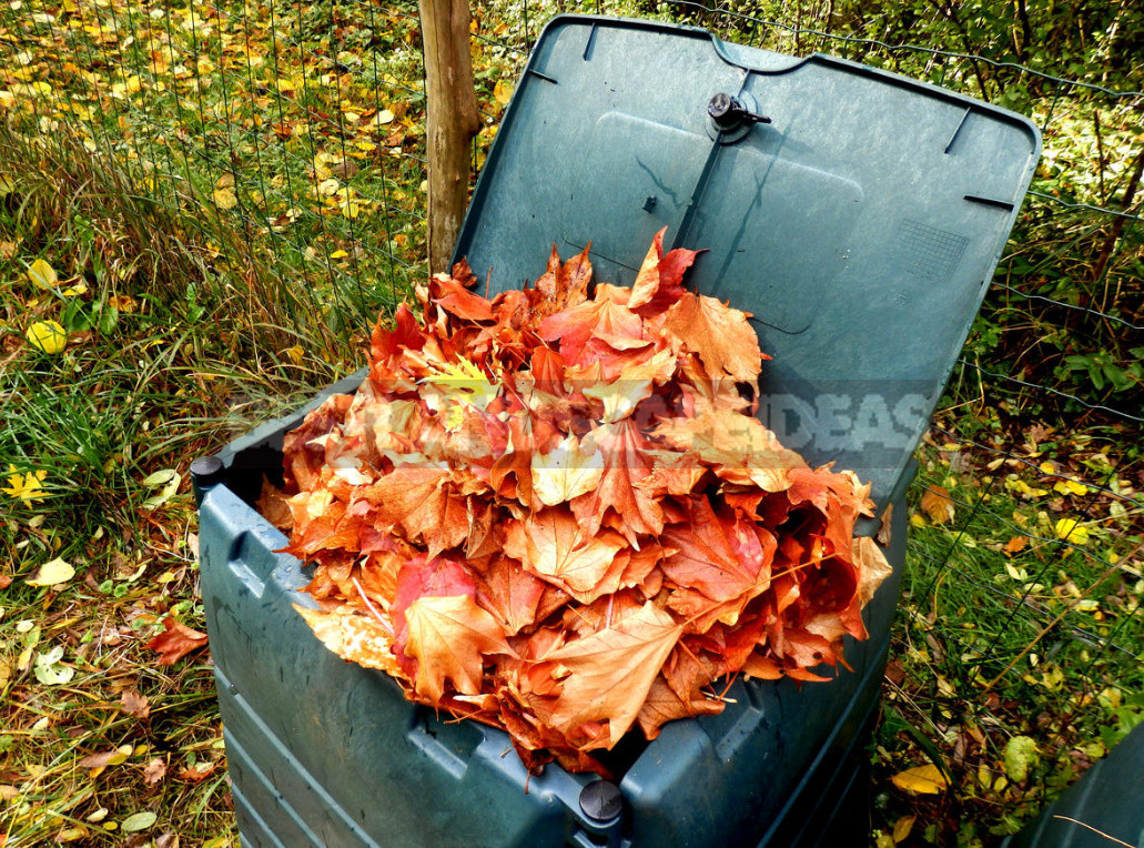 The Most Useful Compost From Fallen Leaves. Cooking Tricks.