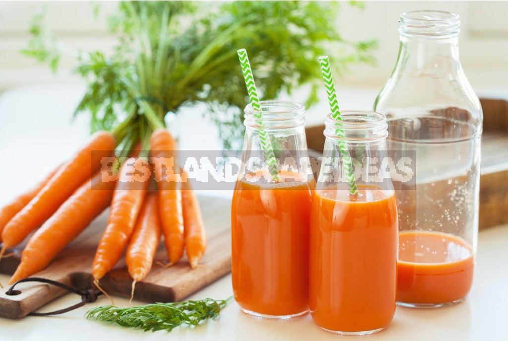 Benefits And Harms of Carrot Juice
