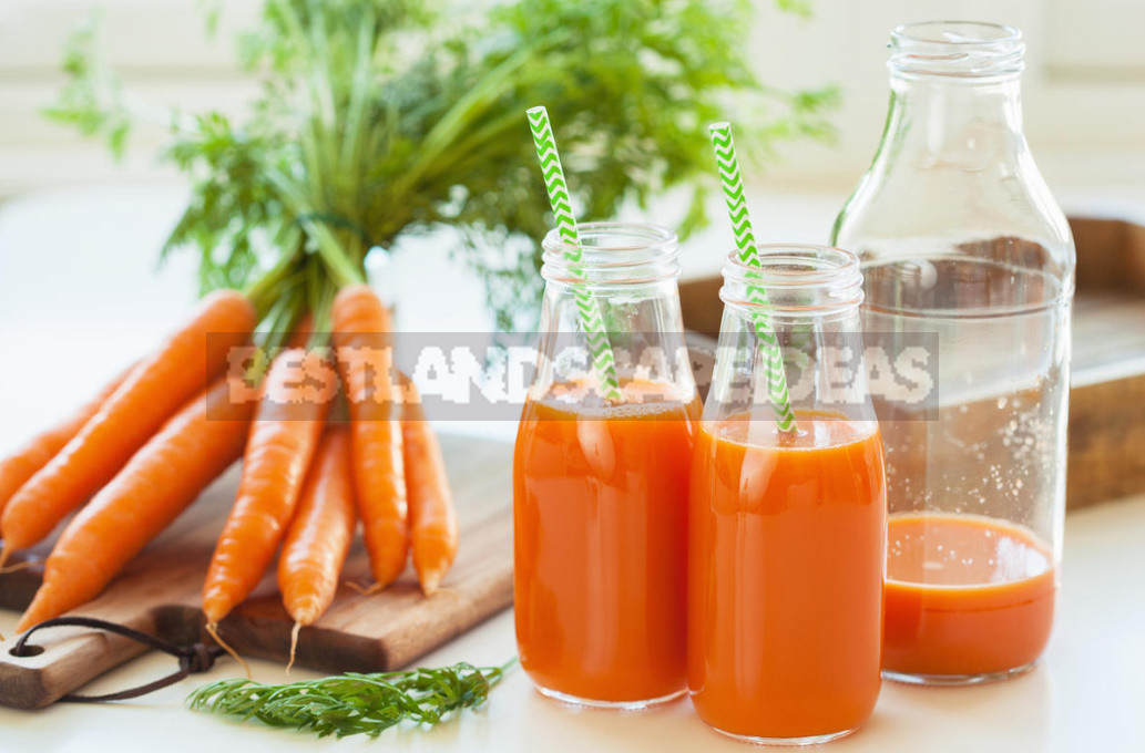 Carrot Juice For the Heart And Blood Vessels - Carrot Juice For the Heart And Blood Vessels