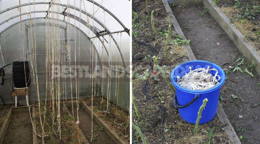 How to Prepare a Greenhouse For Winter