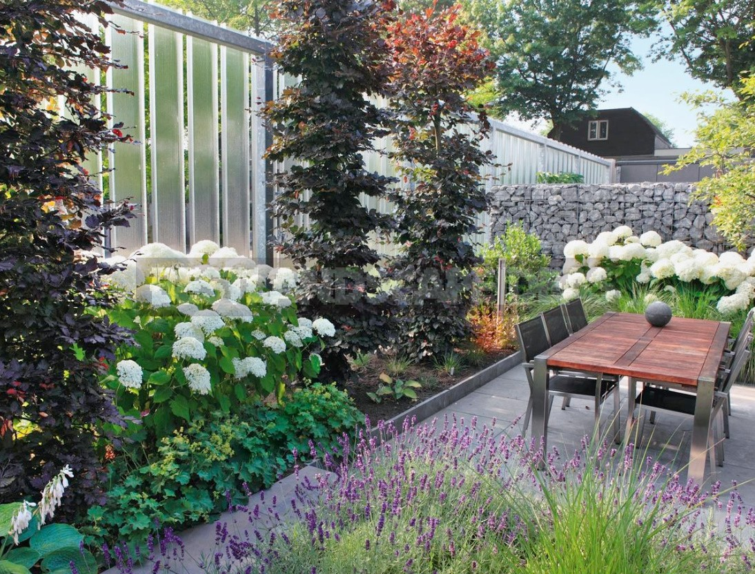 Creating a Multi-Level Garden: Landscape Design Techniques (Part 1)