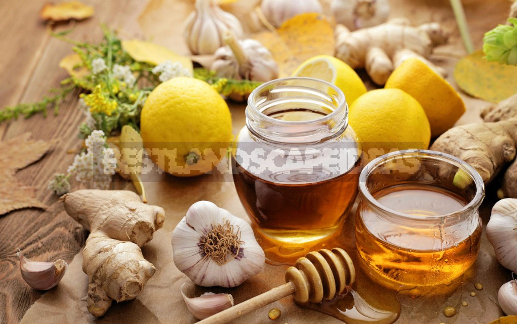 Effective Methods of Prevention And Treatment of Colds And Flu