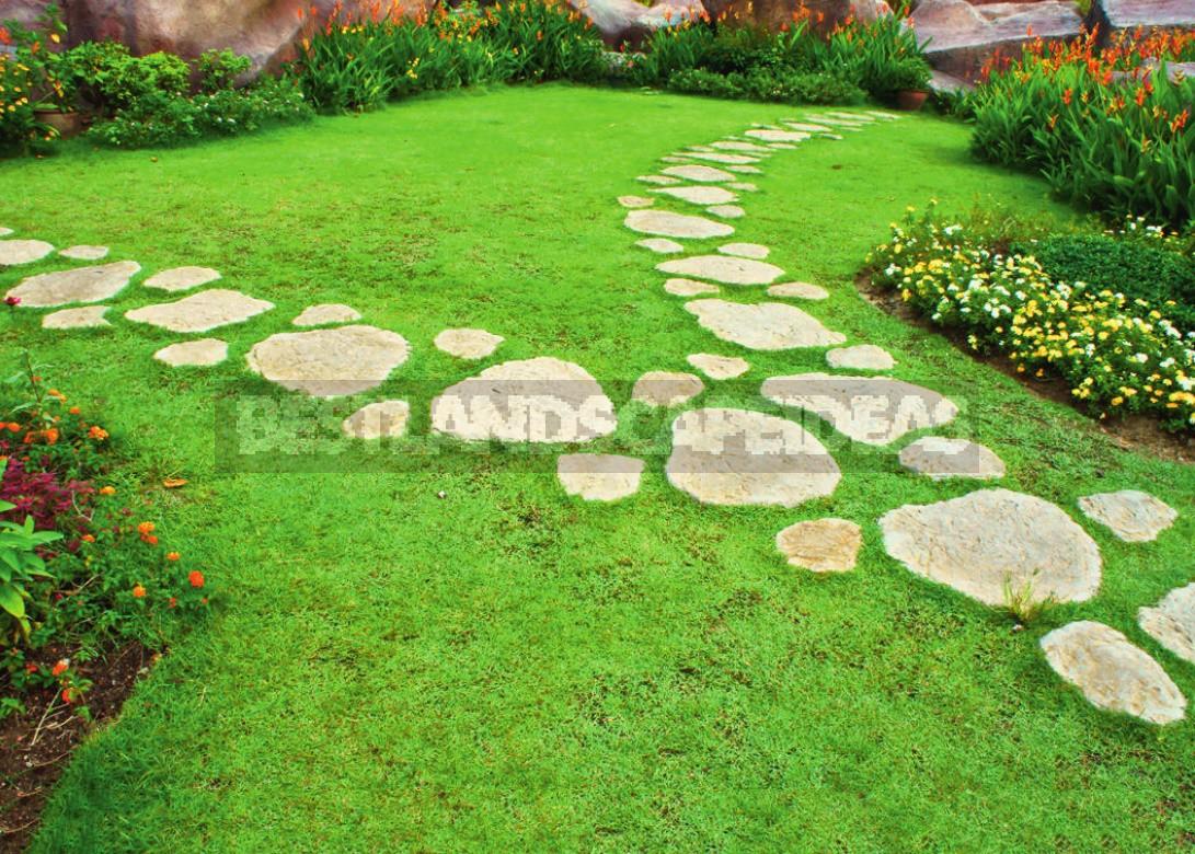 Garden Paths Design Options