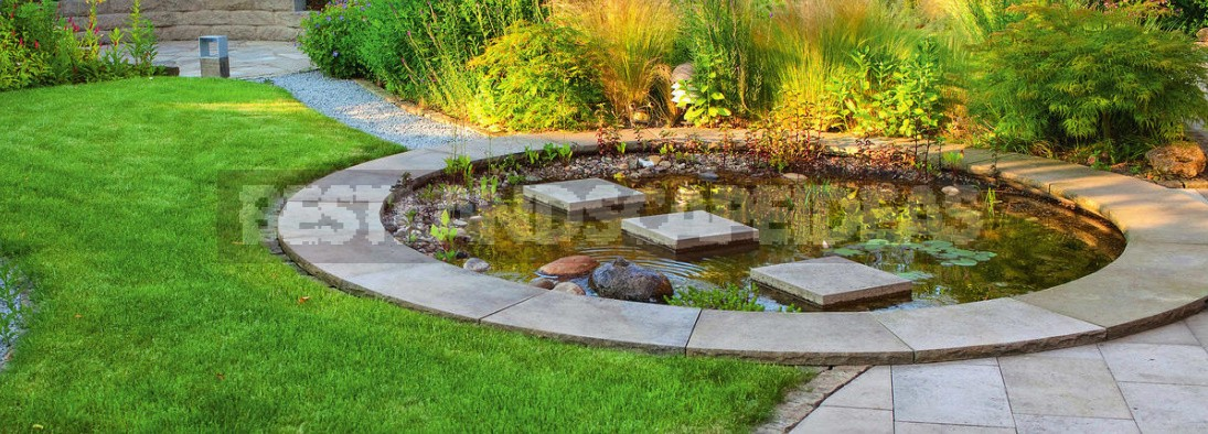Small Ponds For Small Plots