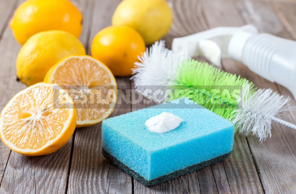 Truth And Myths About Detergents