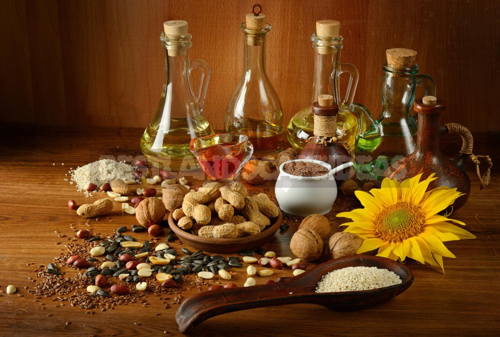 Vegetable And Animal Oils: What Is Best For Cooking (Part 1)