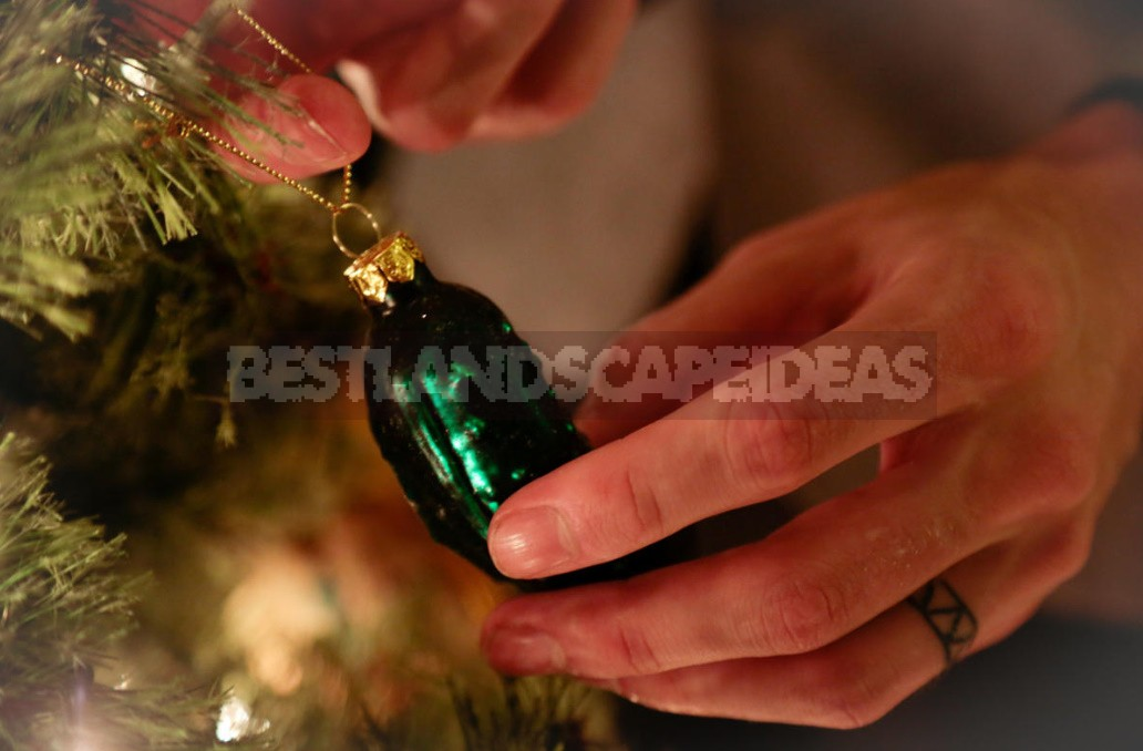 12 Unusual New Year And Christmas Traditions