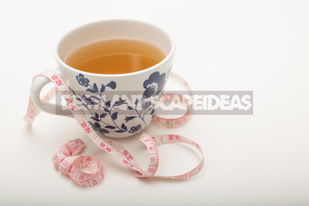 Is It Possible To Use Tea Instead Of Diet?