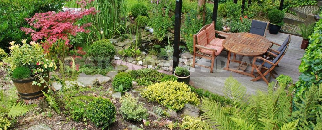 Landscape Design With Your Own Hands: Mistakes Of Amateurs