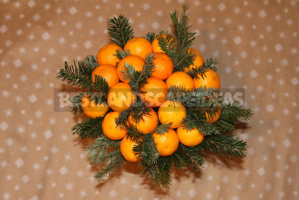 Making a New Year's Bouquet. Very Simple And Tangerine-Flavored