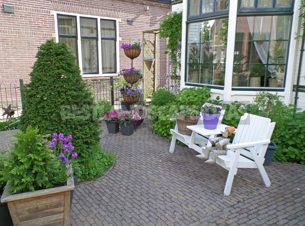 Secrets Of a Beautiful Front Garden. How To Design The Entrance Area?