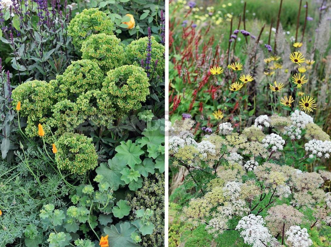 A Few Ideas That Will Make The Garden Beautiful (Part 1)