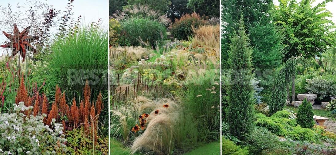 A Few Ideas That Will Make The Garden Beautiful (Part 2)