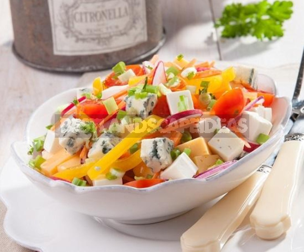 Ten New Salads For The Holiday. A Selection Of Delicious Recipes (Part 2)