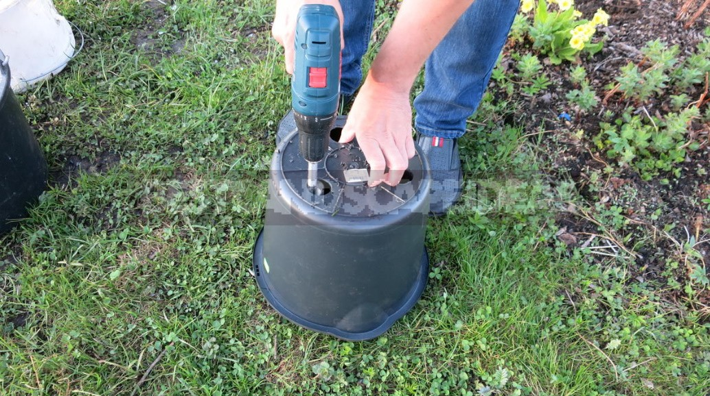 Vegetable Garden In Containers: Growing Vegetables In Old Buckets And Basins (Part 2)