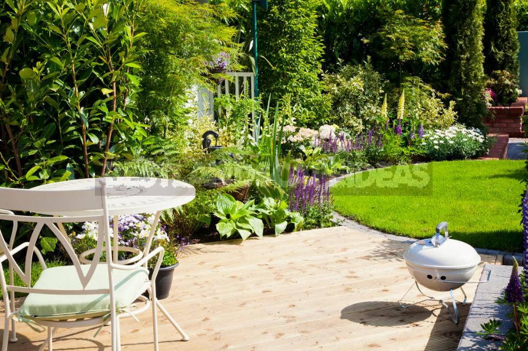 I'm My Own Landscape Designer. How To Make a Planting Plan And Irrigation Scheme (Part 1)