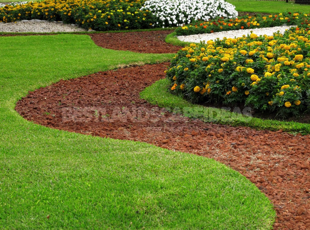 Lawn: Work Is Not For The Lazy (Part 1)