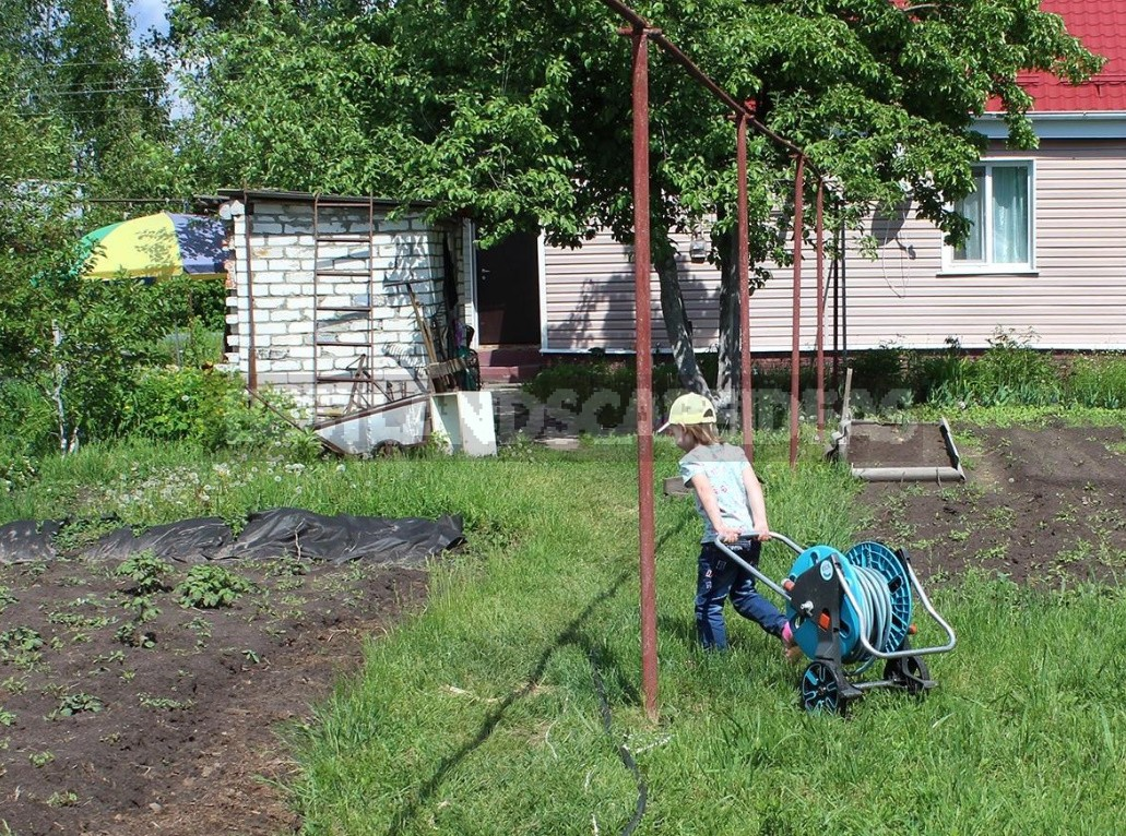 Tested On Yourself: Five Convenient Solutions For Irrigation