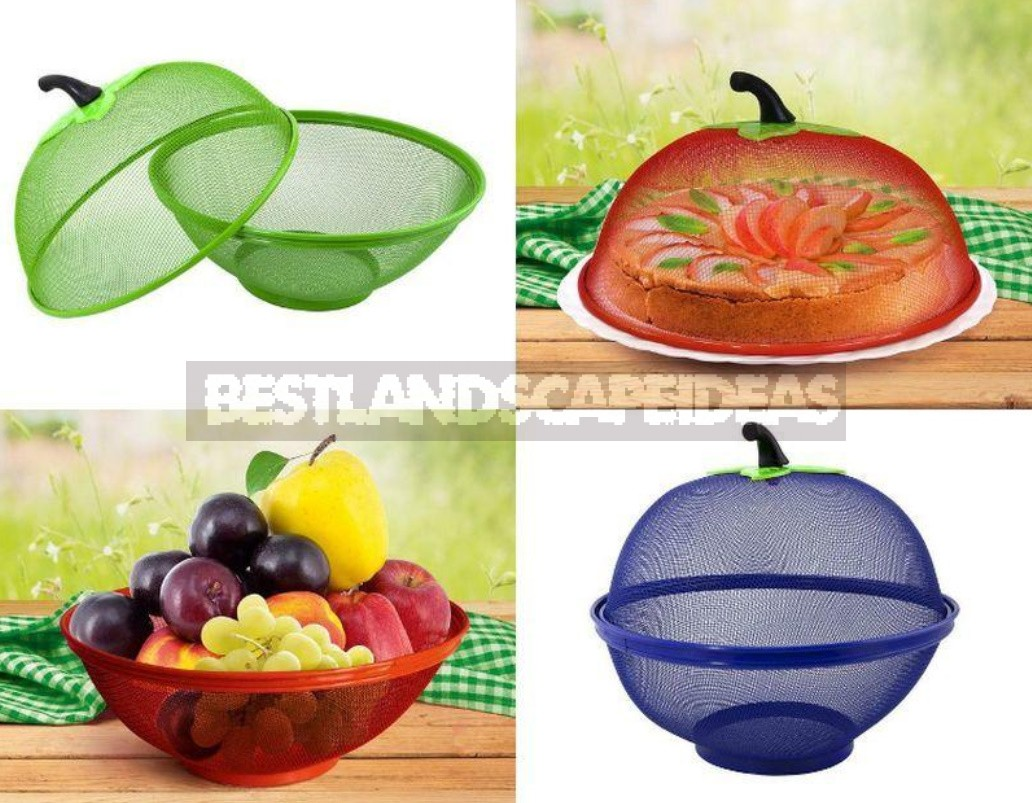 Useful Little Things For Summer Kitchen That Are Worth Buying