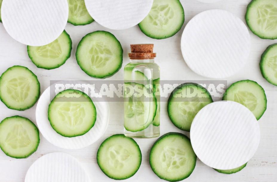 Five Natural Vegetable And Fruit Face Masks: Recipes