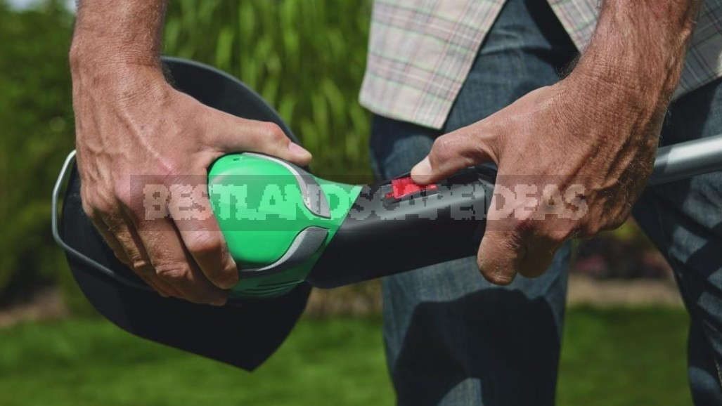 Grass Trimmers: What You Need To Know To Choose