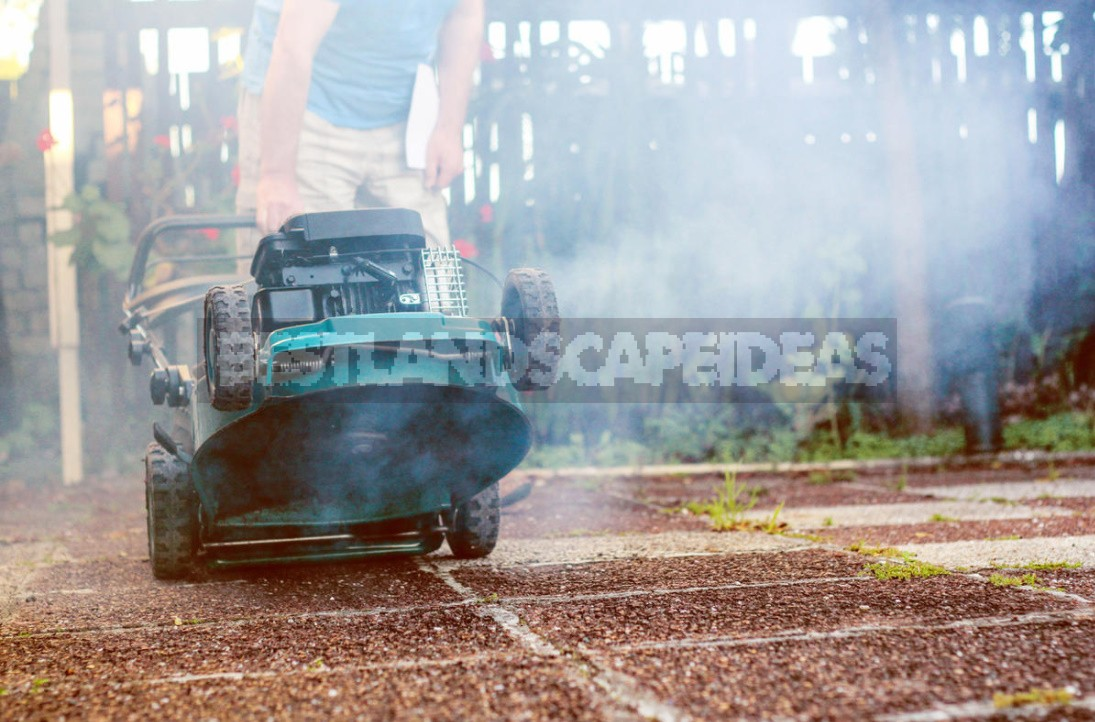 How To Care For a Lawn Mower And Trimmer So That They Last Longer (Part 1)