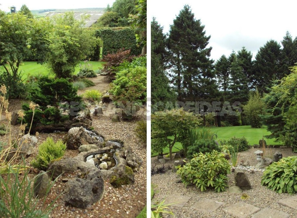 Japanese Garden With English Accent