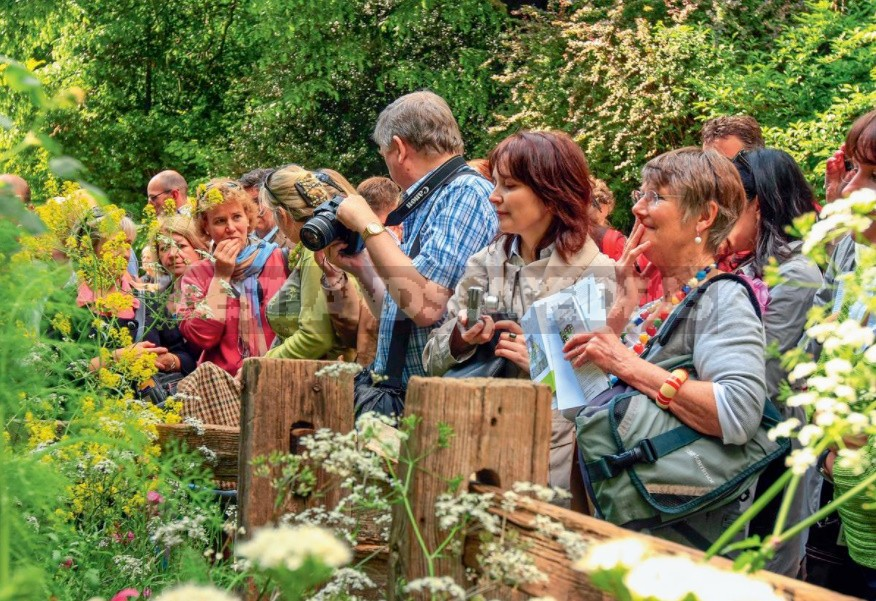 Garden Exhibitions: Secrets Of Successful Photography