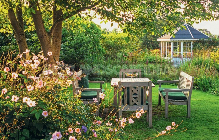 Pearl Of The Garden: Cozy Gazebo