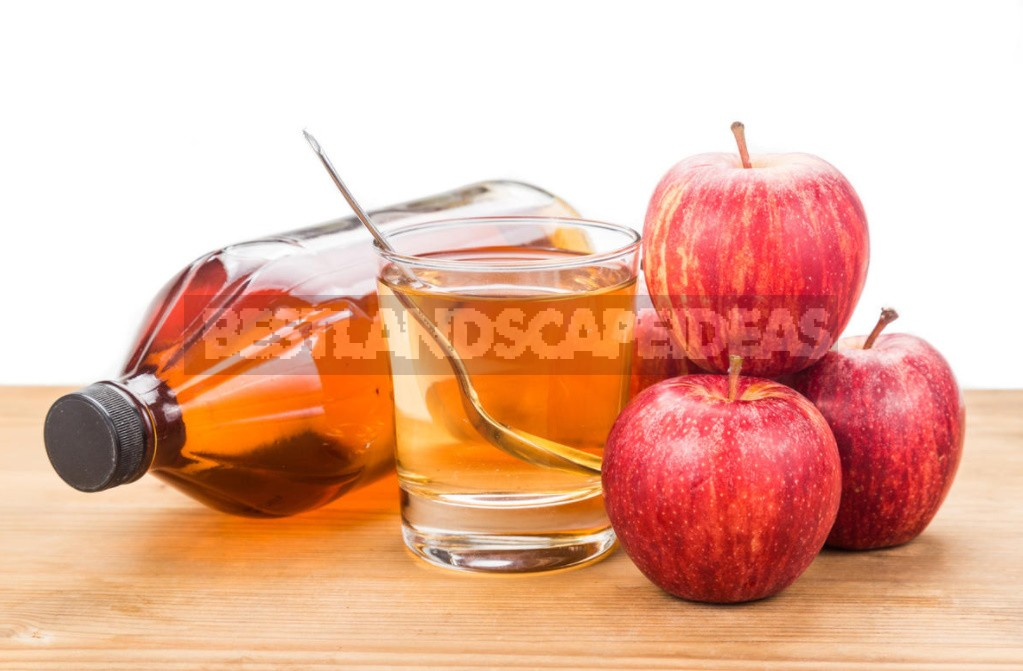 Recipes For Cooking And Using Apple Cider Vinegar