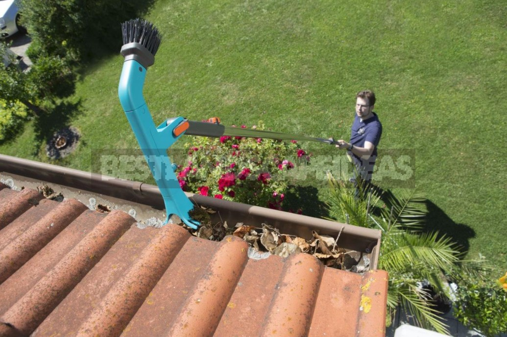 Cleaning The Drains Of a Country House From Leaves And Other Debris