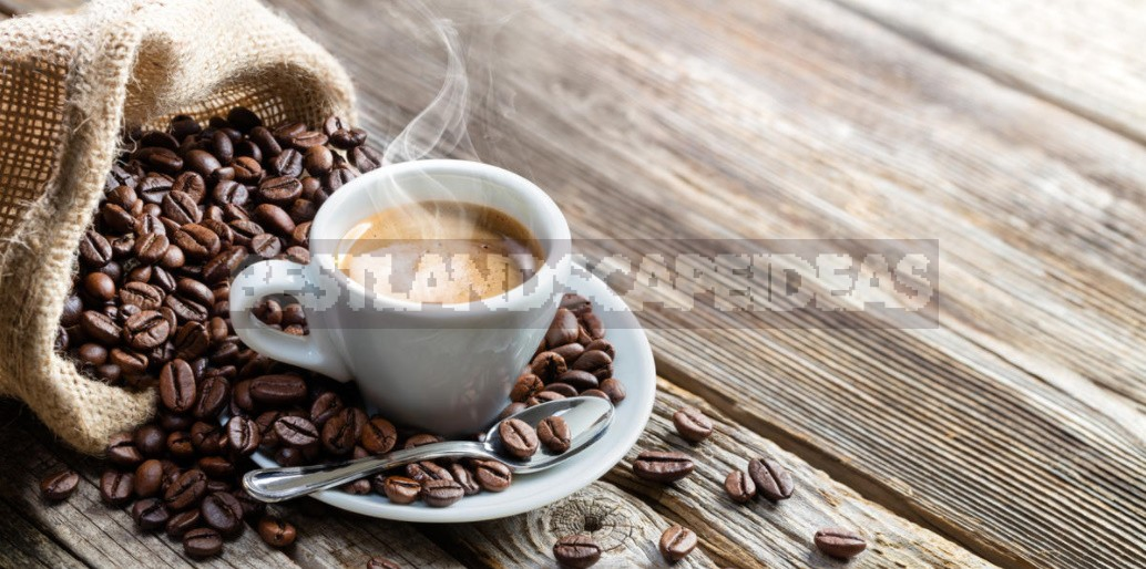 Benefits And Harms Of Coffee: Facts And Myths About The Ancient Drink (Part 1)